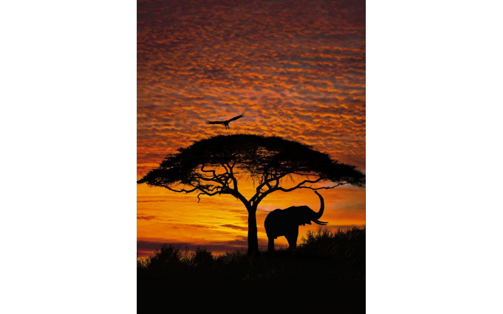 Komar 4 501 african sunset for African sunset wall mural